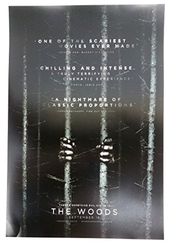 The Woods Blair Witch Poster 13 x 20 inches Comic Con 2016 There's Something Evil Hiding in ... The Woods