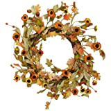 Your Hearts Delight Oak Leaves with Daisies and Acorns Wreath, 9-Inch