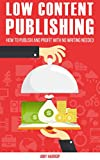 Low Content Publishing: How To Publish and Profit With No Writing Needed