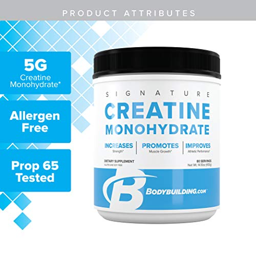 Bodybulding Signature Micronized Creatine Monohydrate Powder | Muscle Builder | Promote Performance Recovery | 400 Grams, 80 Servings