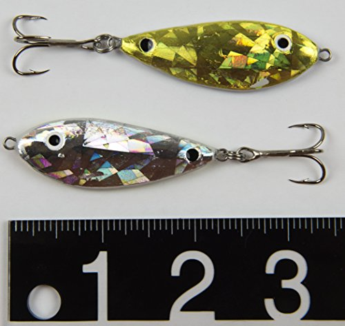 Amazon com : RSR Lures 2-Pack Silver/Gold Glitter Shad Lure