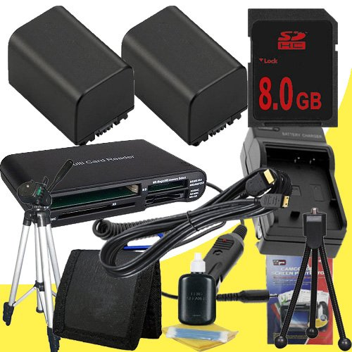 TWO NP-FV100 Lithium Ion Replacement Batteries w/Charger + 8GB SDHC Memory Card + Mini HDMI + Tripod + Memory Card Reader/Wallet + Deluxe Starter Kit for Sony NEXVG10, NEXVG20 Interchangeable Lens HD Handycam Camcorder DavisMAX Accessory Bundle