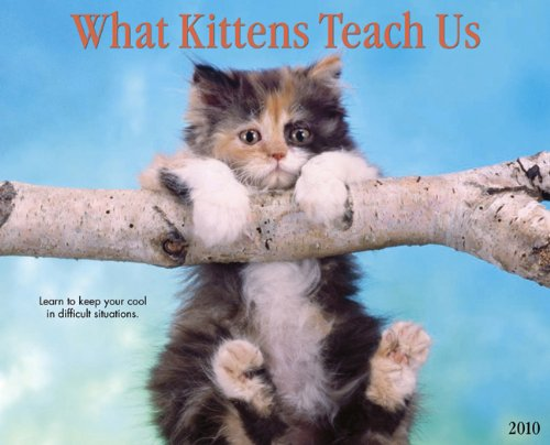 What Kittens Teach Us 2010 Calendar ()
