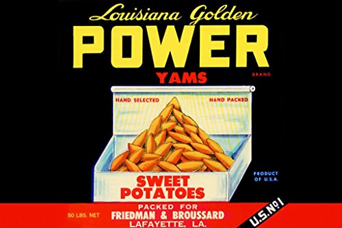 ArtParisienne Louisiana Golden Power Yams 20x30 Poster Semi-Gloss Heavy Stock Paper Print