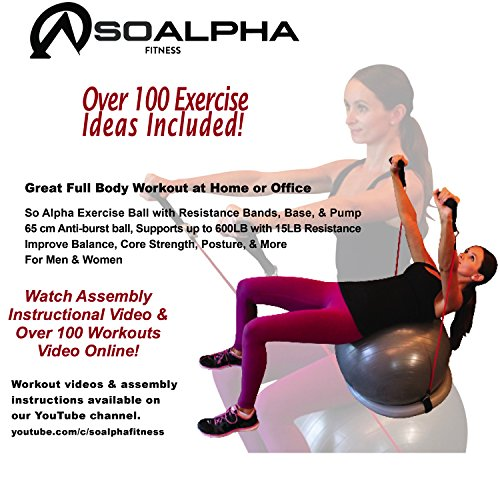So Alpha Premium Exercise Ball with 15LB Resistance Bands, Stability Base, & Pump, 65 CM Fitness Ball, Supports up to 600LBS, Stability Ball with Gym Quality Resistance Bands, Great for Home & Office