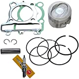 PISTON RINGS SPARK PLUG GASKET SET KIT SET FOR YAMAHA TIMBERWOLF 250 1992 1993 1994 1995 1996 1997 1998 1999 2000