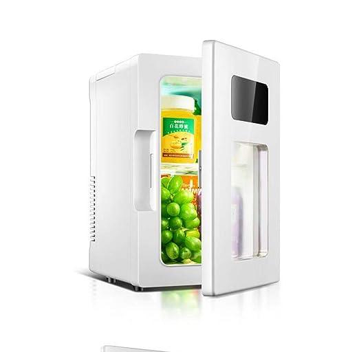 RENHAN 10L Mini Refrigerador Coche,Semiconductor Coche ...