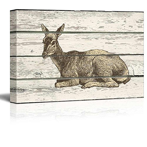 Illustration of an Animal Laying Down on a Wooden Background