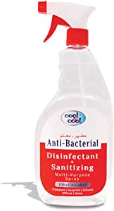 Cool & Cool Disinfectant And Sanitizing Multi Purpose Spray (Pack of 1)