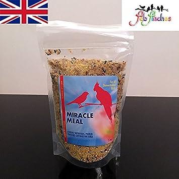Comida blanda para pájaros Morning Bird Miracle Meal con suplemento de vitaminas, para todo tipo de pájaros: Pinzones, canarios y periquitos, ...