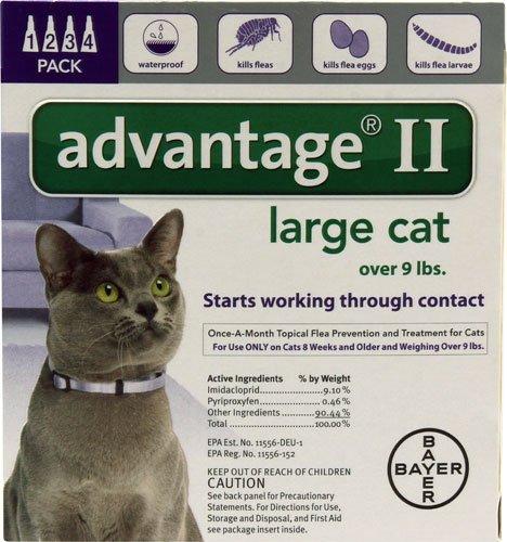cat advantage ii - 9