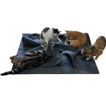 YYC - Alfombrilla de Juegos para Gatos, Divertida e interactiva, para Entrenamiento, arañazos, colchoneta térmica: Amazon.es: Productos para mascotas