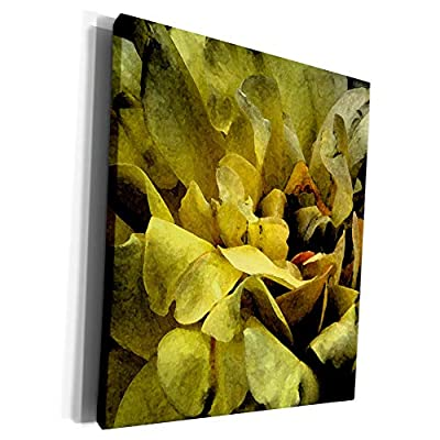 3dRose Jos Fauxtographee- Digital Watercolor Yellow - A digital watercolor of some yellow flowers with a bit of orange - Museum Grade Canvas Wrap (cw_295775)