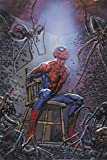 img - for Spider-Man's Tangled Web Omnibus book / textbook / text book