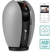 Houzetek 1080P WiFi Wireless IP Camera