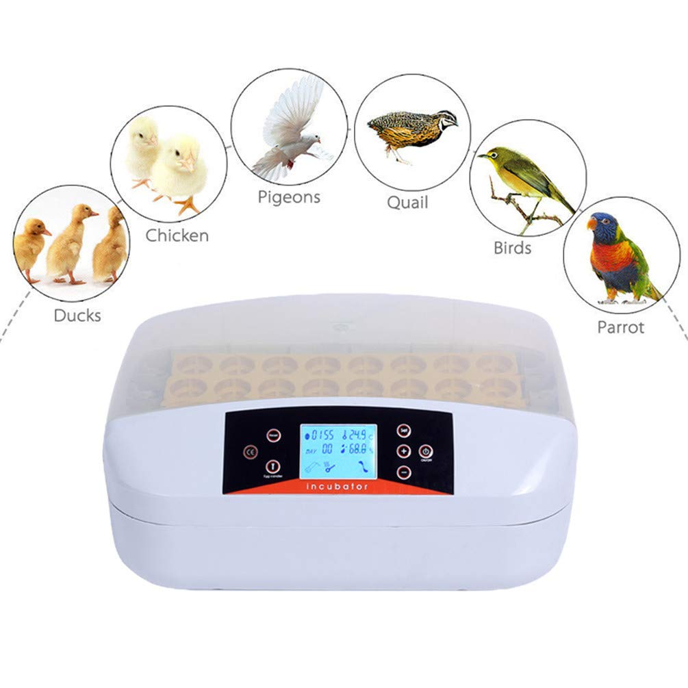 GGYJC 32 Eggs Incubator Intelligent, Automatic Egg Incubator, Temperature Control Hatcher for Hatching,Chicken,Duck,Bird,Quail Poultry