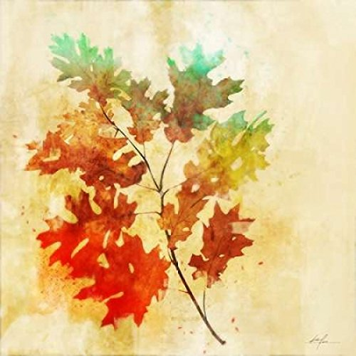 Vibrant Autumn 2 Poster Print by Ken Roko (24 x 24)