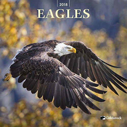"Goldistock ""Eagles"" Eco-friendly 2018 Large Wall Calendar - 12"" x 24"" (Open) - Thick & Sturdy Paper - Regal Beauty"