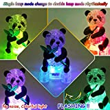 Coolplay 3D Crystal Puzzle Panda Gifts, Desk Toys