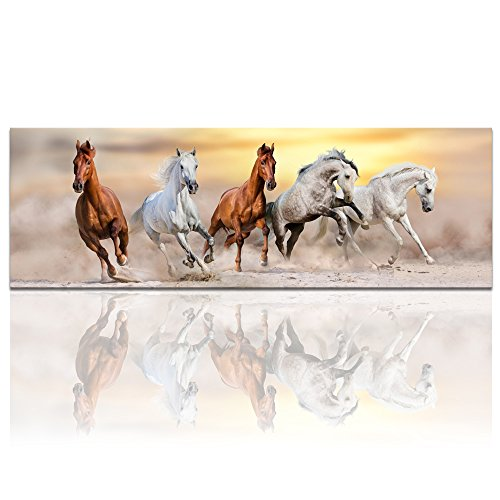 (Sea Charm - Large Size Canvas Wall Art,Running Horse Picture Canvas Prints Desert Sunset Landscape Painting Giclee Artwork Printed,Modern Office Home Living Room Decoration Ready to)