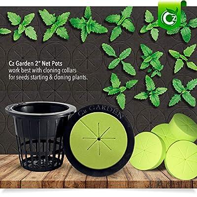 2 inch Net Pots Cups Heavy Duty Round Wide Rim Design - Orchids Aquaponics Hydroponics Slotted Mesh (Cz Garden All Star – 50 Black): Garden & Outdoor