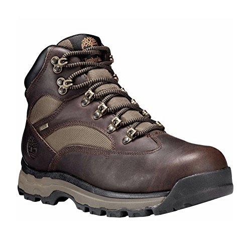 Timberland Chocorua Trail 2 Mid GTX Boot Men (Timberland Chocorua Trail Boots)