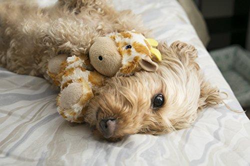 KONG-Georgia-Giraffe-Dog-Toy
