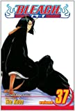 Bleach, Vol. 37: Beauty Is So Solitary