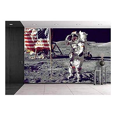 Astronauts on The Moon - Wall Murals