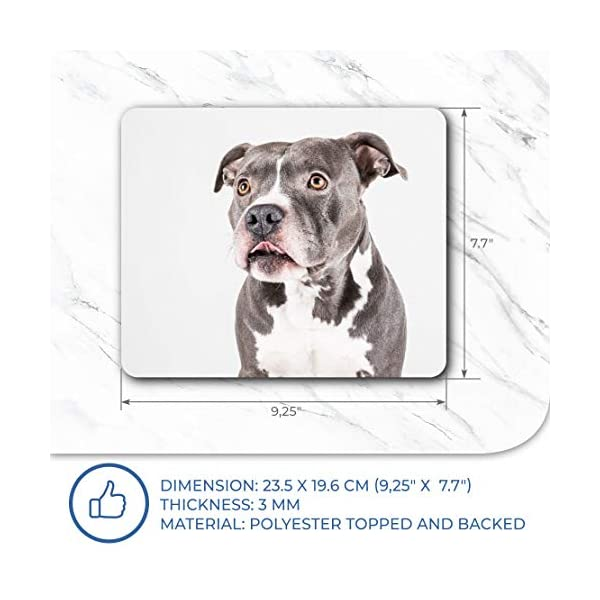 Comfortable Mouse Mat - American Pit Bull Staffy Terrier Dog 23.5 x 19.6 cm (9.3 x 7.7 inches) for Computer & Laptop, Office, Gift, Non-Slip Base - RM12382 7