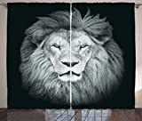 Ambesonne Safari Decor Collection, Portrait of Huge Male African Lion Head with Fire Mane Against Dark Background Image Print, Living Room Bedroom Curtain 2 Panels Set, 108 X 90 Inches, Gray Black