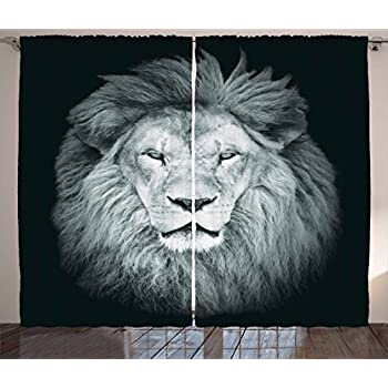 Amazon Com Ambesonne Safari Decor Collection Portrait Of