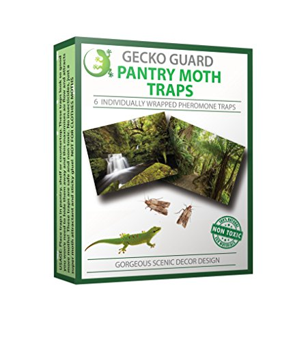 Gecko Guard Pantry Moth Traps. 6 Individually Wrapped Non-Toxic Pheromone Attractant Ready To Use Traps. Gorgeous Scenic Design