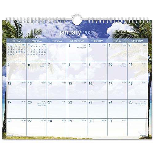 "AT-A-GLANCE 2020 Monthly Wall Calendar, 15"" x 12"", Medium, Wirebound, Tropical Escape (DMWTE828)"