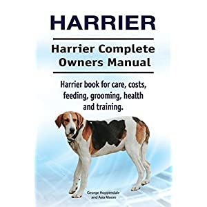 Harrier. Harrier Complete Owners Manual. Harrier dog book for care, costs, feeding, grooming, health and training. 28