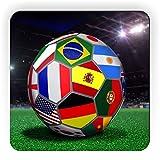 Rikki Knight Brazil World Cup 2014 All Team Flags