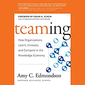 Teaming Audiobook