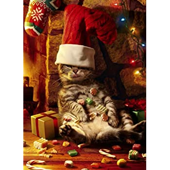 Avanti Christmas Cards, Too Many Treats, 10-Count