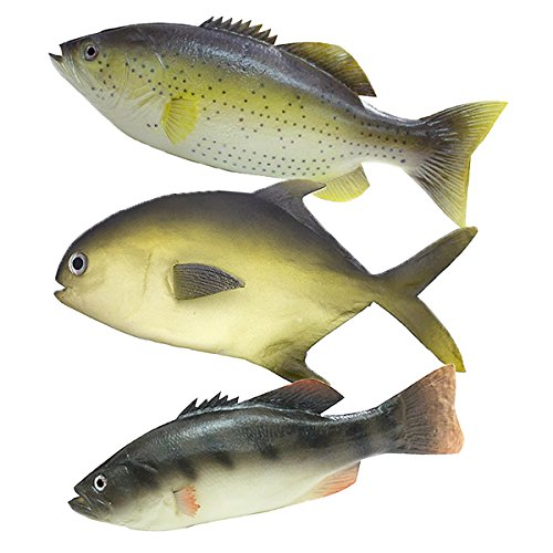 (Wayber 3Pcs Simulated Fish Set for Kids Pretend Play, Home Decor, Market Display, Photography)