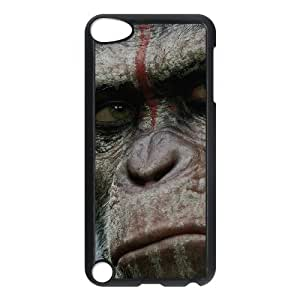 iPod Touch 5 Phone Case With Orangutan Pattern