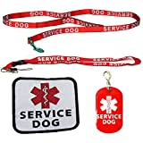 Service Dog Leash with Complimentary Kit - 3 Service Dog Bonuses Including: Service Dog Collar Tag, Lanyard, and Patch. Small to Medium Sized Dog.