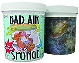 Bad Odor Air Sponge