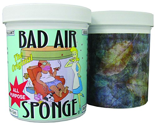 Bad Odor Air Sponge by Jarral Inc