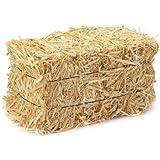 FloraCraft Straw Bales, 5-Inch-by-6-Inch-13- Inch Bale