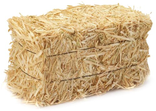 FloraCraft 2 Piece Decorative Straw Bale 1 Inch x 1.25 Inch x 2.5 Inch Natural
