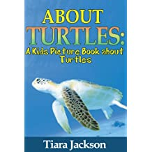 Children's Book About Turtles: A Kids Picture Book About Turtles With Photos and Fun Facts