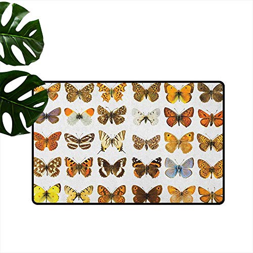 LilyDecorH Butterfly,Machine Washable Carpet Butterfly Miracle Wings Joy Freedom Spiritual Feminine Divine Sign Concept Art 36