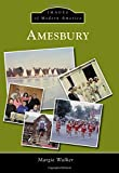 img - for Amesbury (Images of Modern America) book / textbook / text book