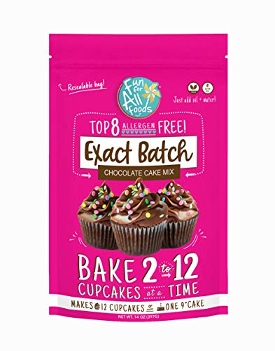 Fun for All Foods Top 8 Free Exact Batch Cake Mix - Resealable bag lets you bake some now, bake some later (Chocolate)