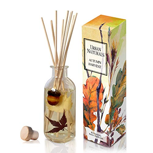 - Urban Naturals Autumn Harvest Scented Oil Reed Diffuser | Fall Home Decor with Real Leaves & Botanicals | Creamy Pumpkin Pie, Nutmeg, Maple & Vanilla